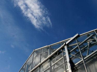 Immagine per Schermi termici per serre